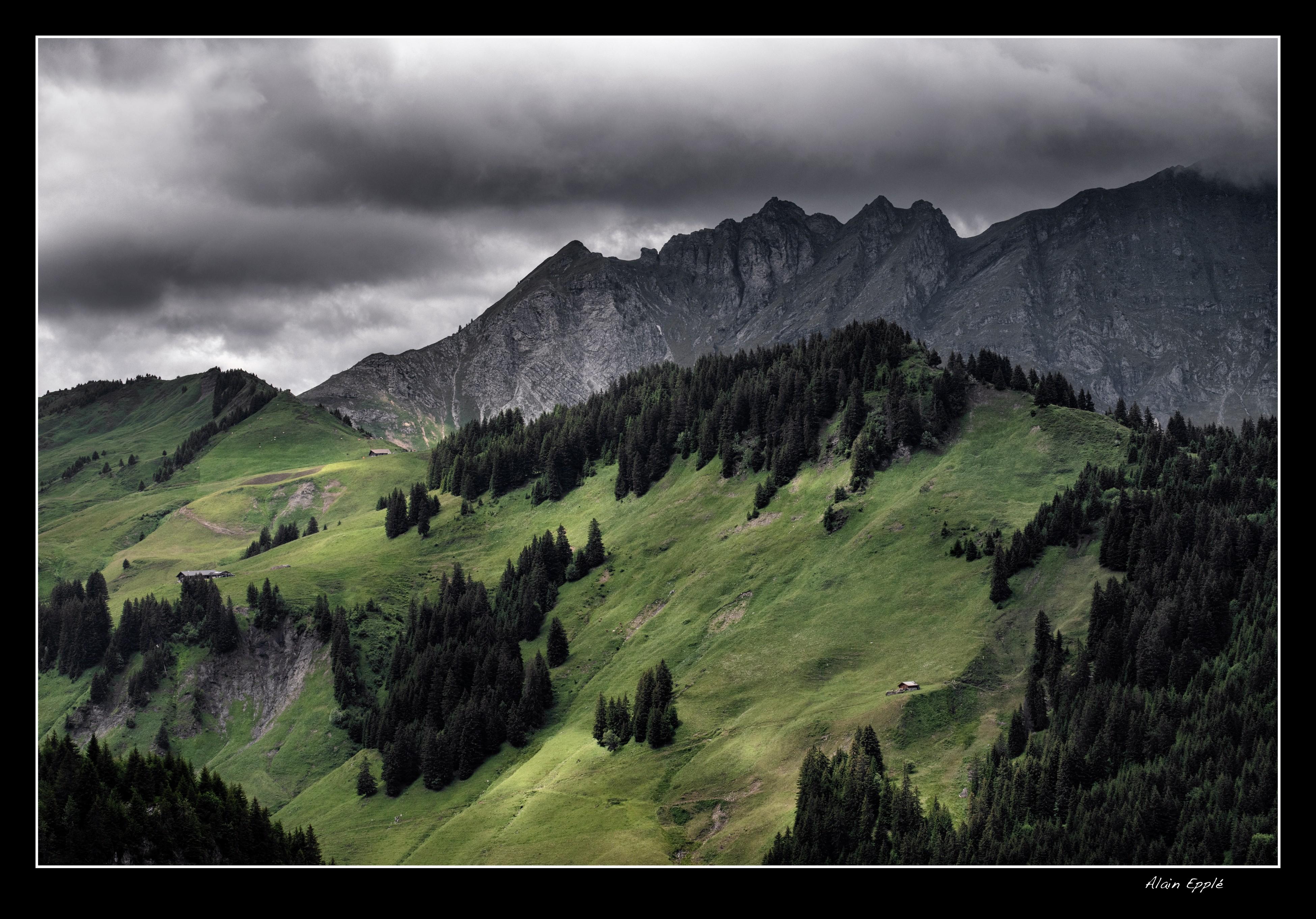 Alpage au-dessus de la Barmaz - CH42