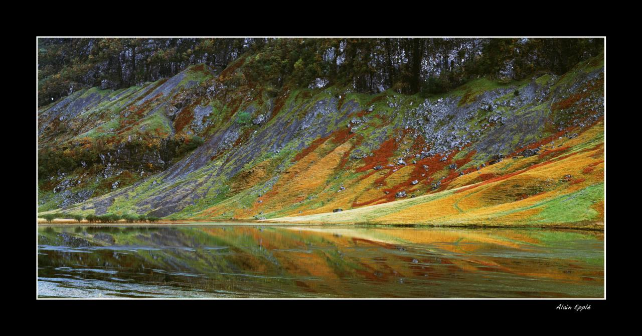 Lac à Glencoe - E12