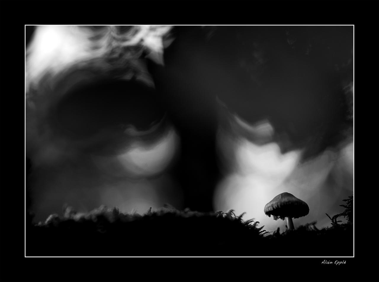 Un oeil noir te regarde - MC9