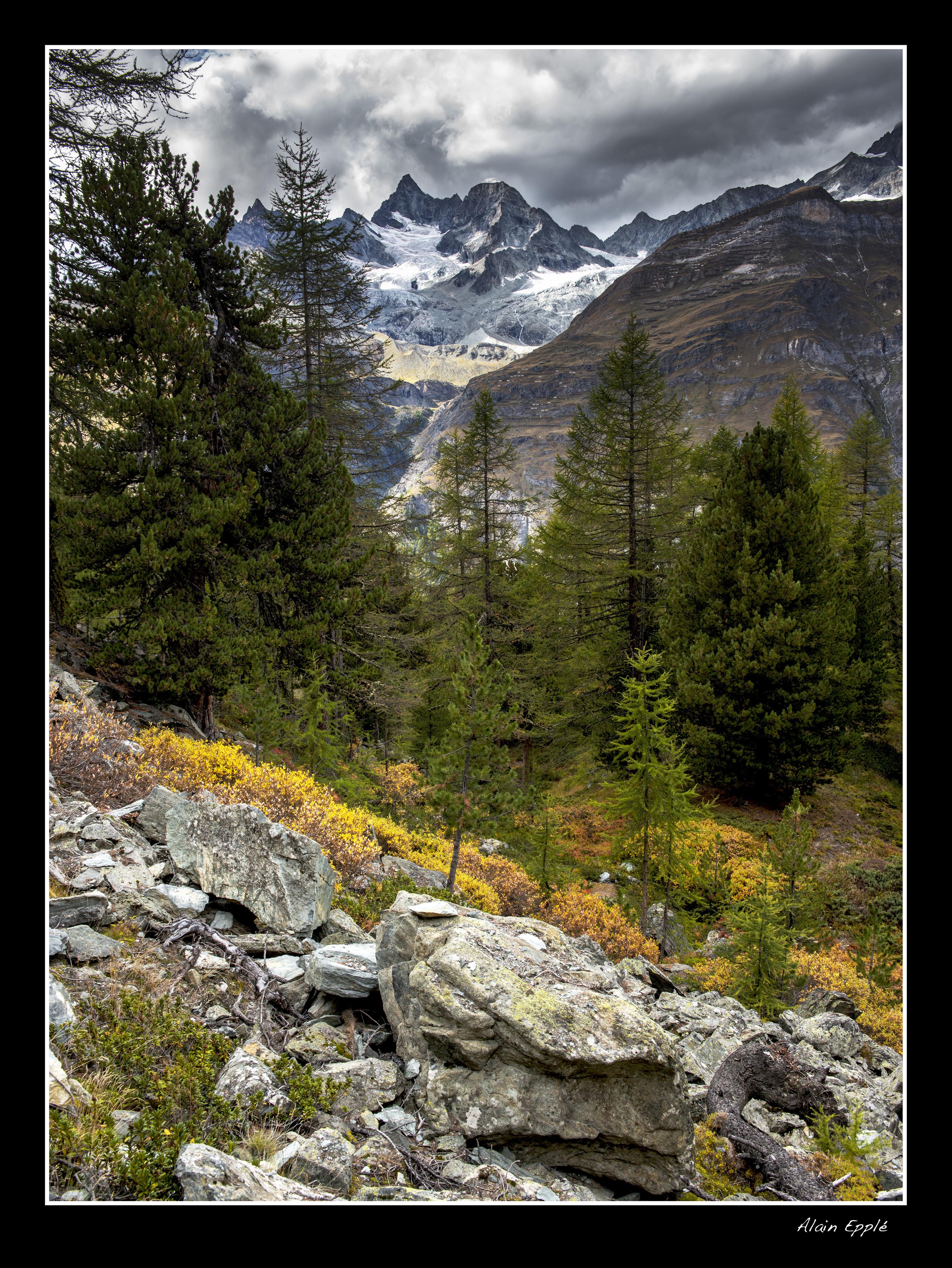 Zermatt - CH1